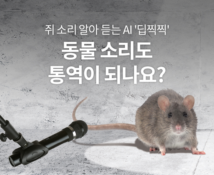 쥐 소리 알아 듣는 AI '딥찍찍' 동물 소리도 통역이 되나요?