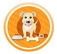 중국 지앙난 대학교 연구진이 개들이 어떤 냄새가 나는 사료에 끌리는지 실험했다.