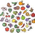 과일 채소를 더 많이 먹는 아이들과 그렇지 못한 아이들의 차이는?